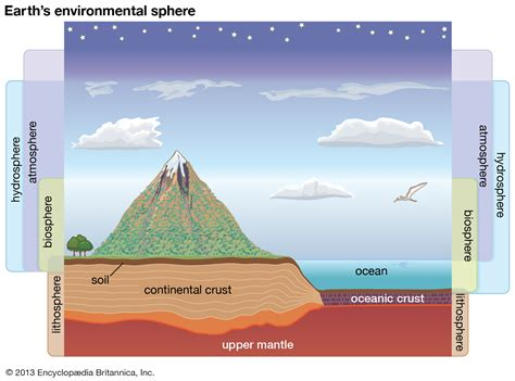 biosphere   Definition, Resources, Cycles, & Facts