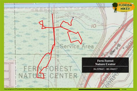 Fern Forest Nature Center | Florida Hikes!