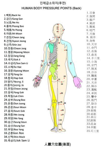 The human body pressure points - Yahoo Search Results