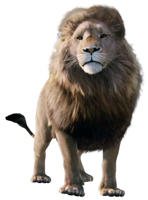 Lion | The Chronicles of Narnia Wiki | Fandom