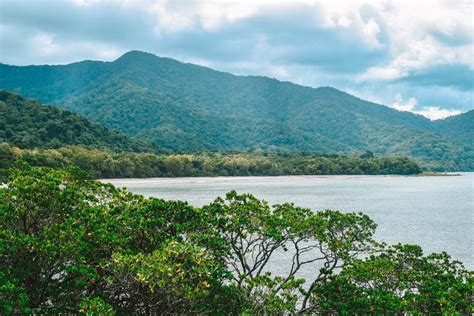 7 EPIC Day Trips From Cairns